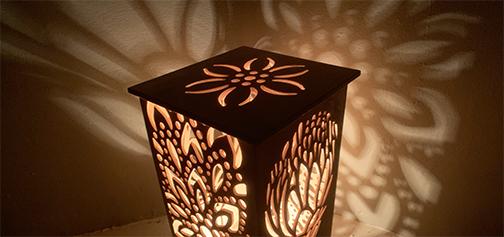 Lightbox for Wildlife Care, WA Fundraiser